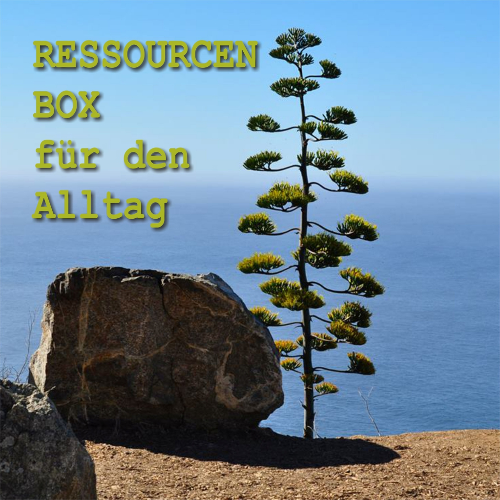 Ressourcen-Box